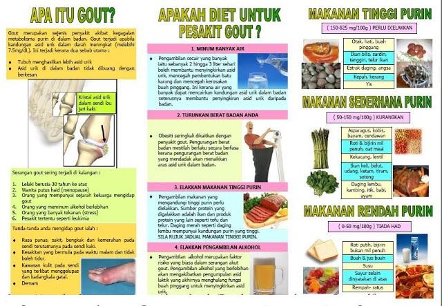 Apa itu Gout