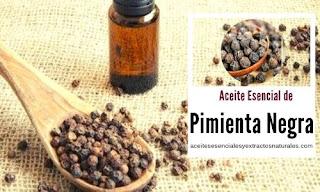 El aceite esencial perejil rizado es de los más buscados por sus propiedades febrífugas