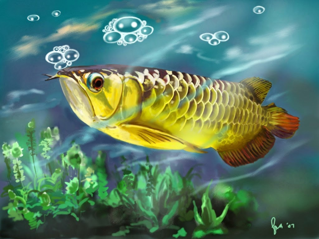 Asian Arowana Cartoon