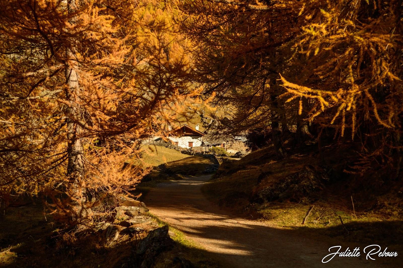 Alpage du Monal, randonnée en montagne