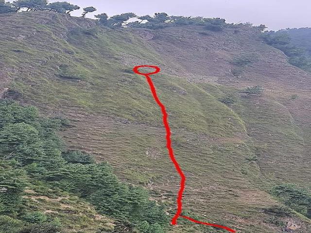 हिमाचल: घास काटते समय मां-बेटी पर रंगड़ों ने किया हमला, जान बचाने के लिए भागी तो सही लेकिन नही बच सकी जान
