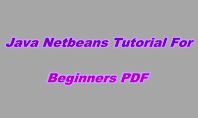 Java Netbeans Tutorial For Beginners PDF