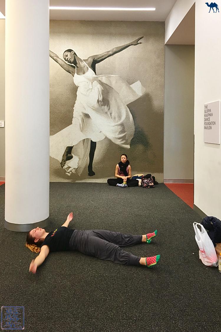 Le Chameau Bleu - Salle du Studio de Danse Alvin Ailey à New York USA
