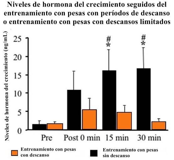 El ejercicio físico promueve la producción de la hormona de crecimiento