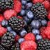 Quels sont les antioxydants phénoliques et quels sont leurs effets ?