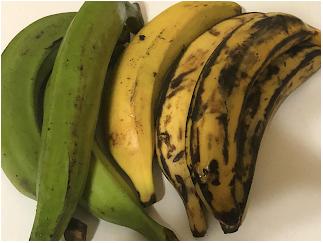 Plantain (Musa Paradisiaca) Green(unripe) Yellow(ripe)
