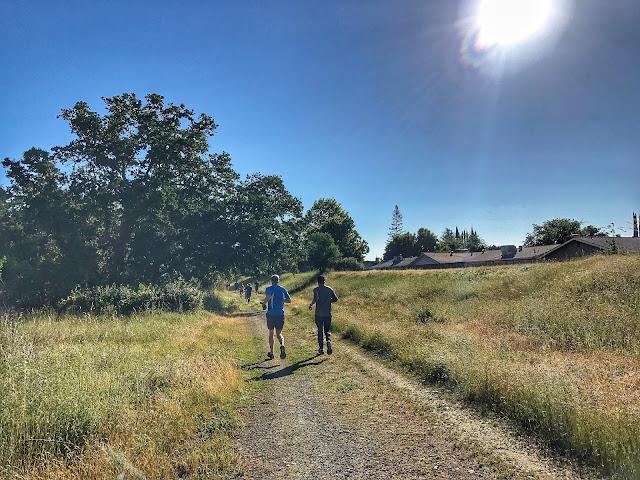 American River Parkway Half Marathon trail part