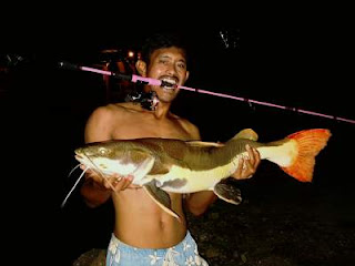 Mengenal Ultra Light Fishing