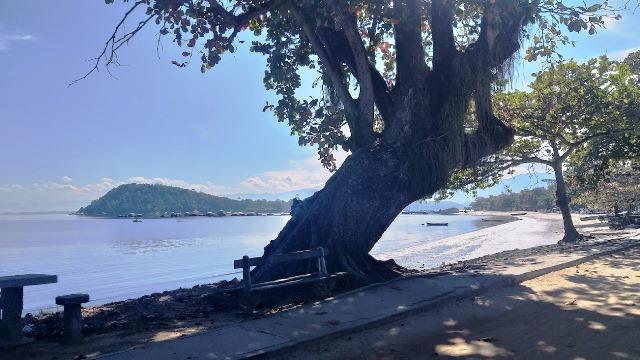 Paquetá, no Rio de Janeiro, belas vistas e muita tranquilidade
