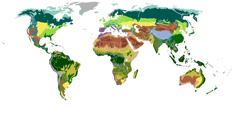 Biomas De La Tierra; Mapamundi Gratis Y Libre