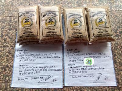 Benih padi yang dibeli   SRI JUWATI Rembang, Jateng.  (Sebelum packing karung).