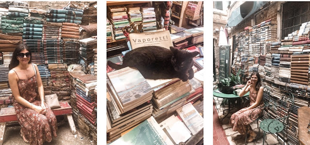 24 hours in Venice- book shop with a resident cat