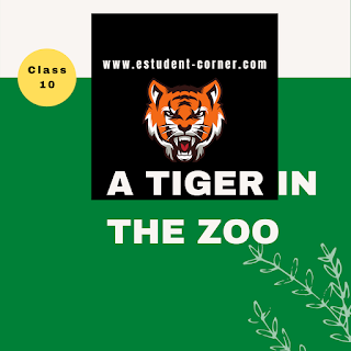 A Tiger in the Zoo Questions Answers