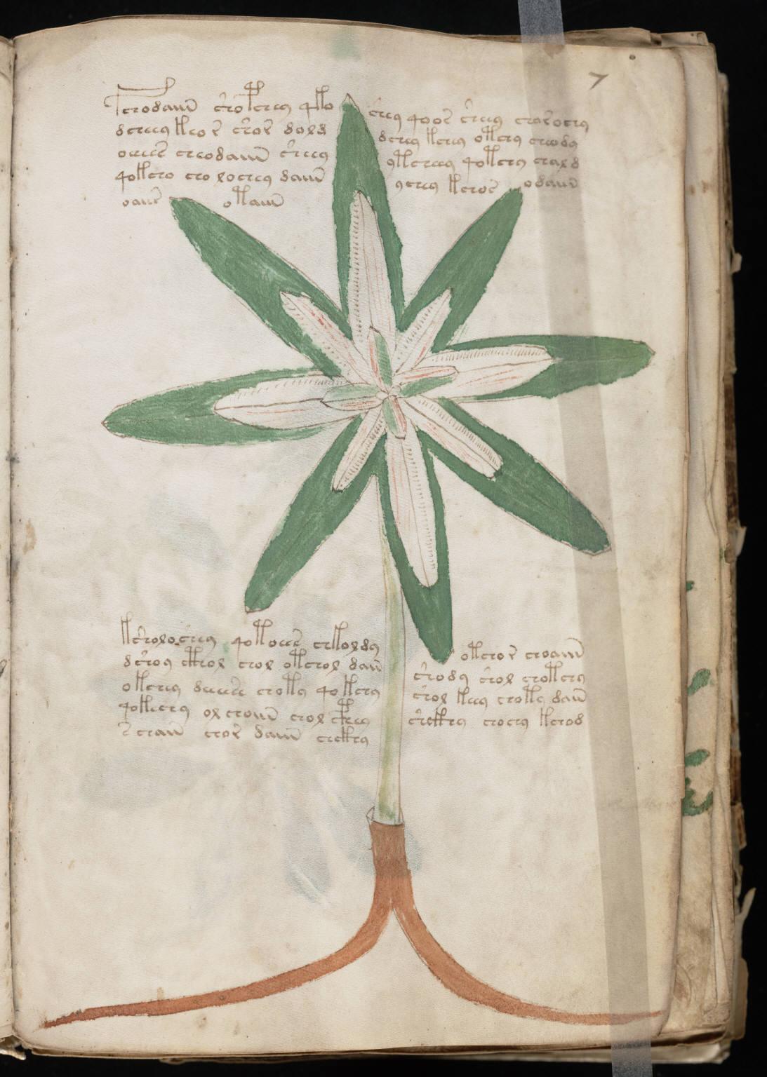 manuscrito015