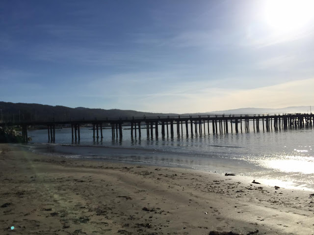 Pier and ocean in Half Moon Bay