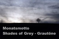 https://diezitronenfalterin.de/2019/11/01/monatsmotto-im-november-shades-of-grey-grautoene/