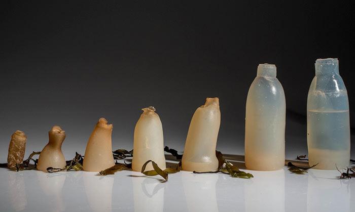Botellas de algas 100% biodegradable es la nueva alternativa a los de plásticos