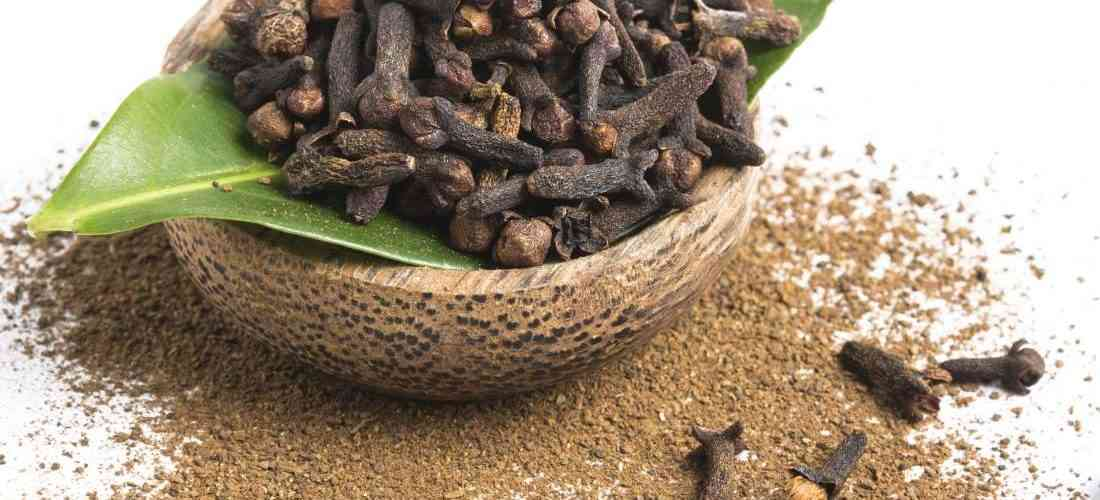 12 Benefícios do Cravo-da-Índia à Saúde