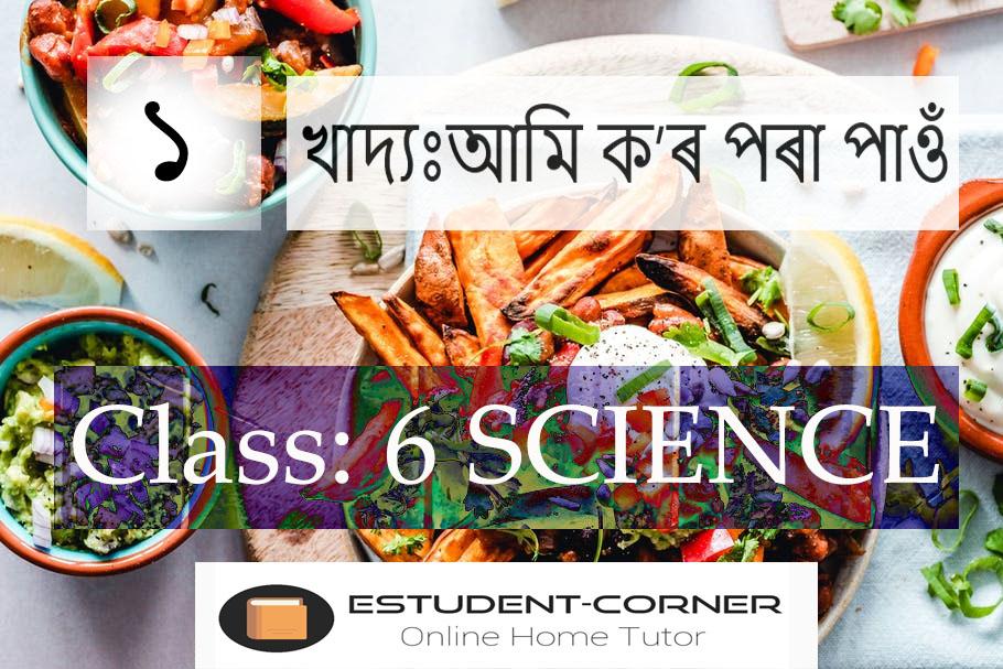 খাদ্যঃআমি ক'ৰ পৰা পাওঁ Class 6, Science, Lesson 1, SCERT Assam