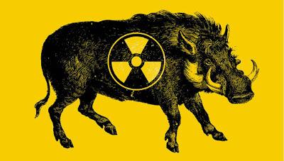 javalis radioativos, radiação, Chernobyl, javalis radiotivos de Chernobyl, curiosidades, caça de javali