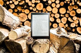 Jak wybrać pokrowiec na e-Book?