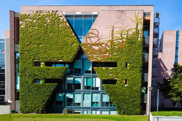 Green facade direct system