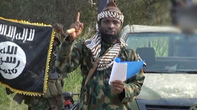 VIDEO: 'You Can't Find Me - Abubakar Shekau Blasts US Over $7m Bounty Placed On Him