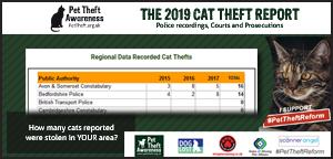 2019 Cat Theft Report  #PetTheftReform