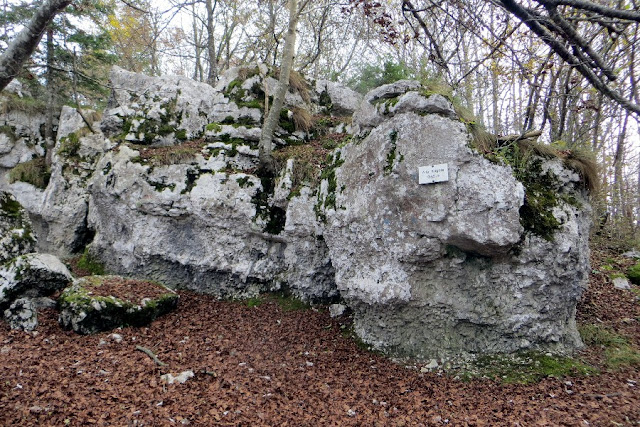 altar knotto