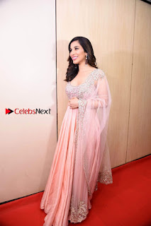 Bollywood Actress Model Sophie Choudry Stills in a Beautiful Dress at The Annual Central Excise Day Celetion  0015.jpg