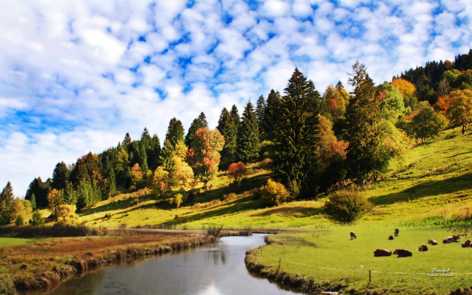 3d hd wallpapers beautiful nature hd wallpapers 1080p - Most popular hd wallpapers 1080p ...