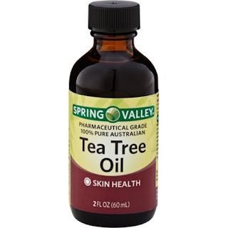 minyak pohon teh