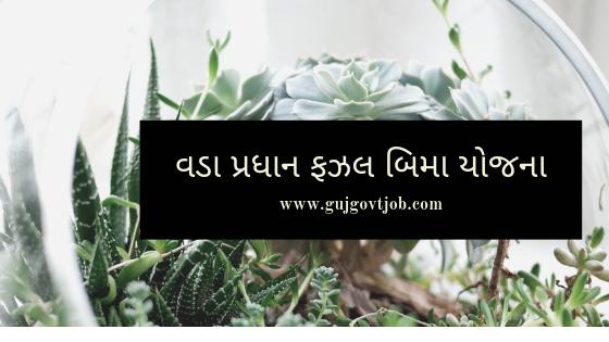Pradhan Mantri Fasal Bima Yojana details - વડા પ્રધાન ફઝલ બિમા યોજના - Gujarati