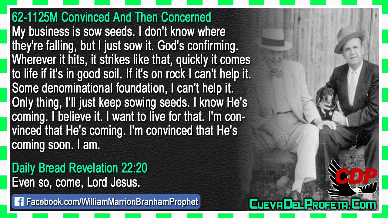 My business is sow seeds - William Marrion Branham