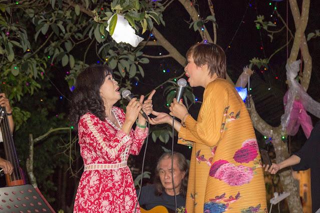 Đêm nhạc kỷ niệm 20 năm ca hát của ca sĩ Thùy Anh