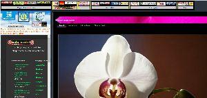 http://cei017.oxatis.com/PBCPPlayer.asp?ID=1787002&ADContext=1