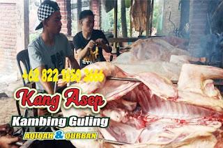 Resep dan Cara Mengolah Kambing Guling Kang Asep Bandung,resep kambing guling,