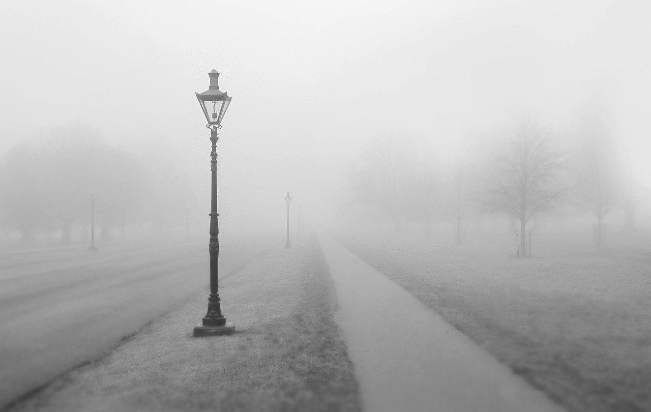 snackenglish, fog, niebla, street, streetlight, farola