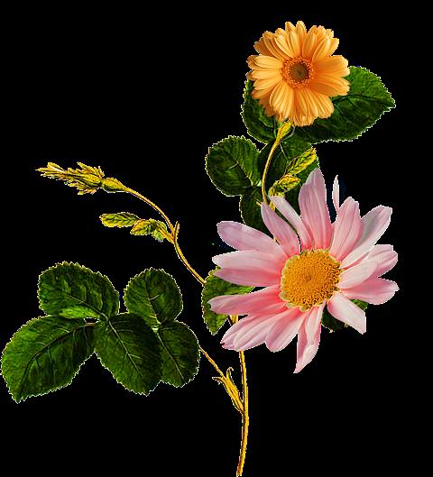 Flower-patch-textile-design-7029