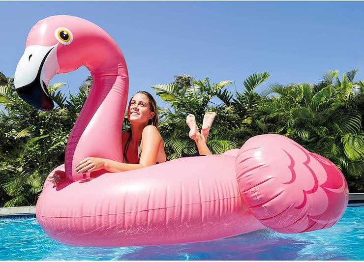 flotador de cisne gigante