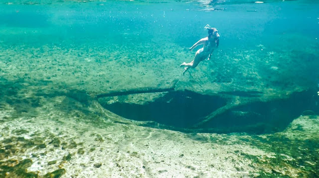 Swimming in Freshwater Spring