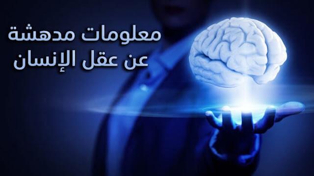 معلومات عن عقل الإنسان