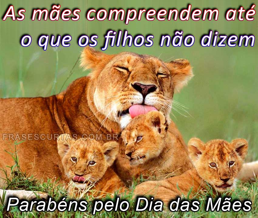 Especial Dia Das Mães Frases E Mensagens De Feliz Dia Das Mães