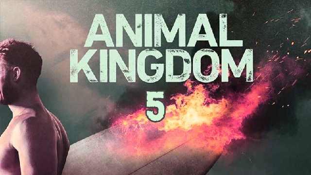 Animal Kingdom Season 5: Release Date, Cast, Plot, Trailer And Latest Updates