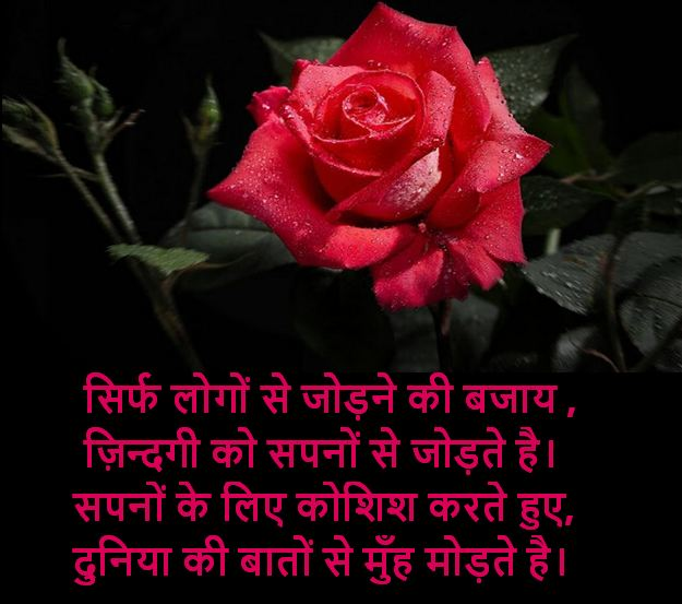 heart touching shayari images, heart touching shayari images collection