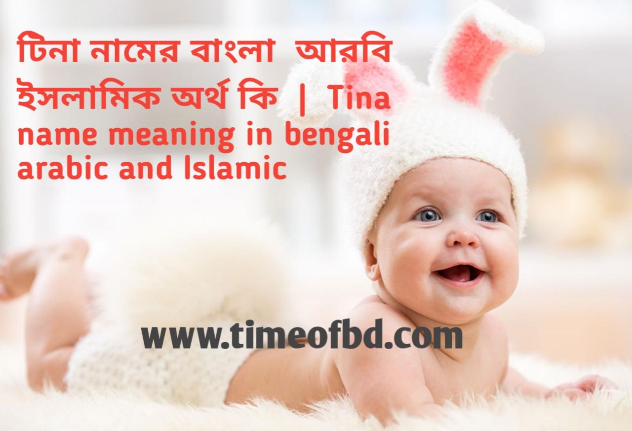 টিনা নামের অর্থ কী, টিনা নামের বাংলা অর্থ কি, টিনা নামের ইসলামিক অর্থ কি, tina name meaning in bengali
