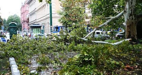 Negyvenezer ügyfélnél okozott áramszünetet a vihar a Dél-Alföldön