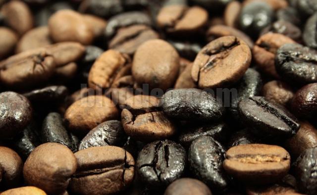 Tips mencari penjual kopi terbaik