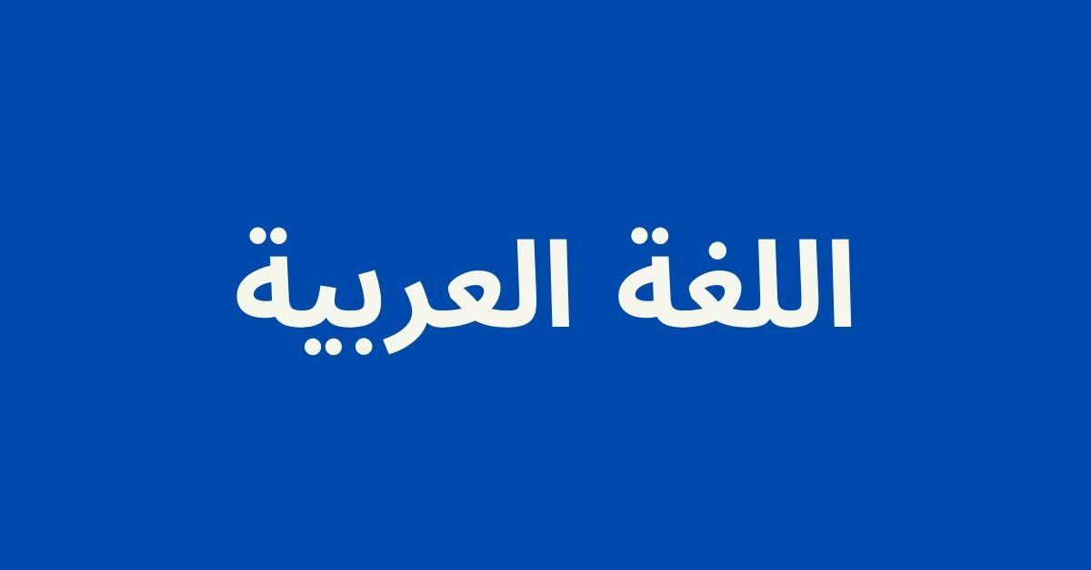 لمحة عن تخصص اللغة العربية ومجالات عمله