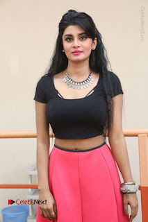 Telugu Actress Harini Stills at Dhyavudaa Movie Teaser Launch  0115.JPG